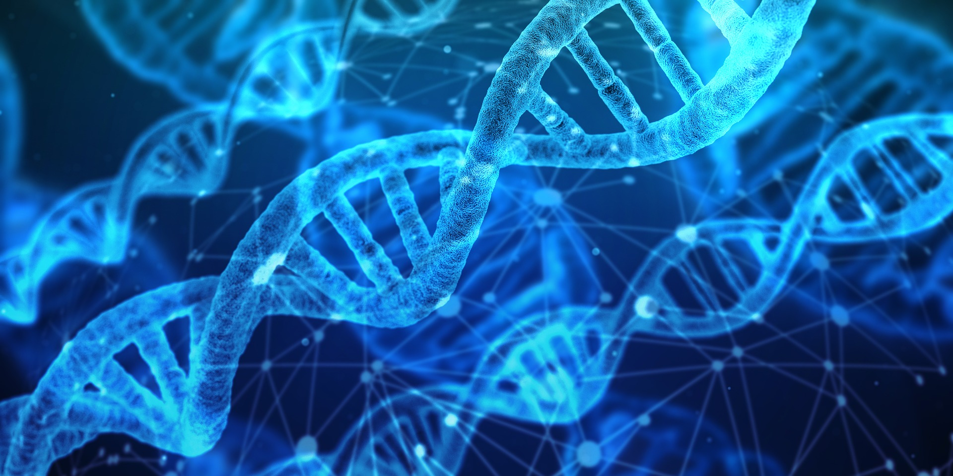 Genetic Testing For Athletes – What can it tell me?